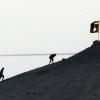 ذبح أكراد سوريا: مؤامرة اقليمية - دولية