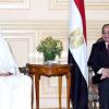 أمير قطر يسلط الضوء على القضية الفلسطينية