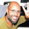 إطلاق سراح سيف الإسلام نجل القذافي