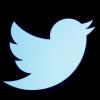 تويتر: خلل فني كشف كلمات السر لعدد كبير