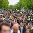 السترات الصفراء مجددا  في الشوارع: لا