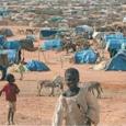 عودة العنف إلى دارفور