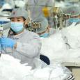الصين تصدر ملايين الكمامات رديئة الصنع ,مواد تعقيم غير فعالة